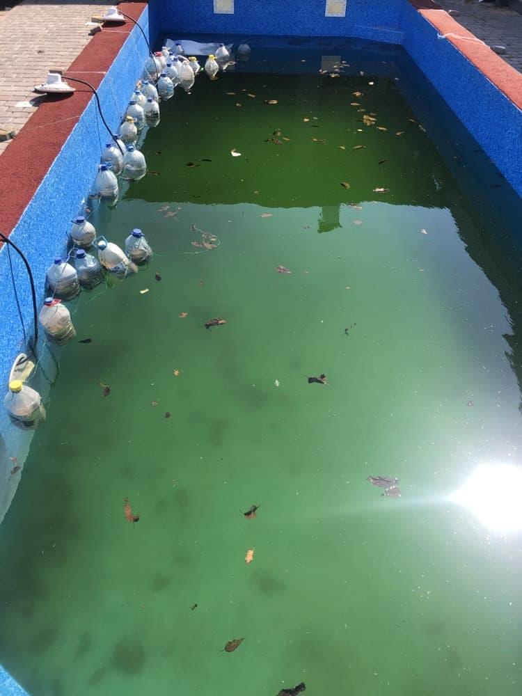 Моем пленочный бассейн после зимы